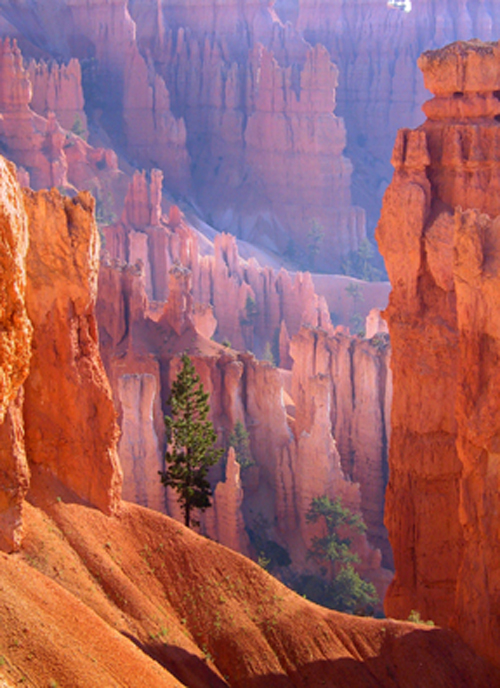 Bryce Canyon National Park | Ranger Doug's Enterprises